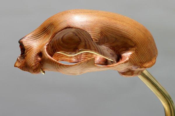 Felis Domesticus Skull: Carved Cedar, Brass Mount, Pedestal, 2007 ©