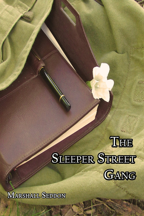 The Sleeper Street Gang
