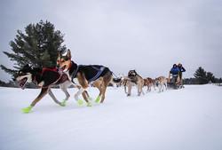 Dec_Trail_Run
