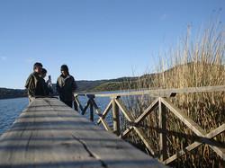 RESERVA NAC. LAGUNA TORCA | CHILE