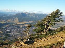 RESERVA NACIONAL COYHAIQUE | CHILE