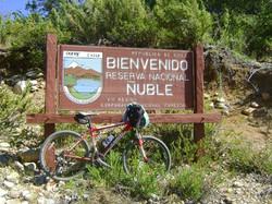 RESERVA NACIONAL ÑUBLE   CHILE
