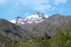 RES. NAC. BELLOTO DEL MELADO | CHILE