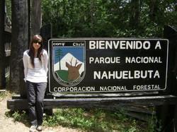 PARQUE NACIONAL NAHUELBUTA | CHILE