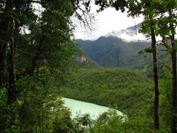 PARQUE NACIONAL QUEULAT | CHILE