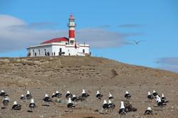 PARQUE NAC. ISLA MAGDALENA | CHILE