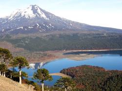 PARQUE NACIONAL TOLHUACA | CHILE