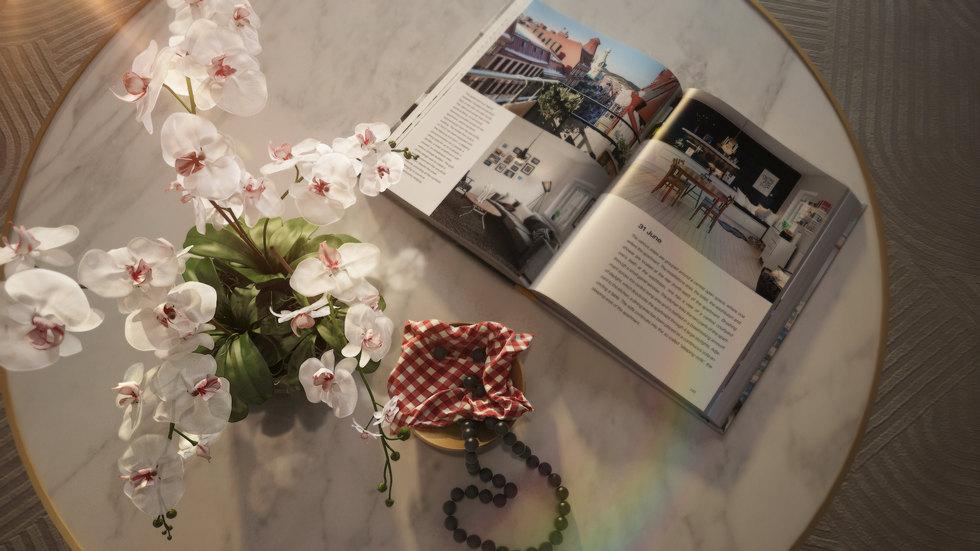 Book Shot-My.jpg