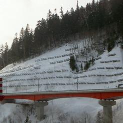 雪崩柵.jpg