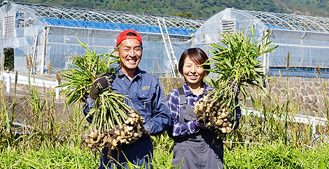 生姜畑煮に立つ福島夫妻