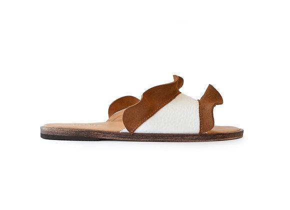 MACA CAMEL