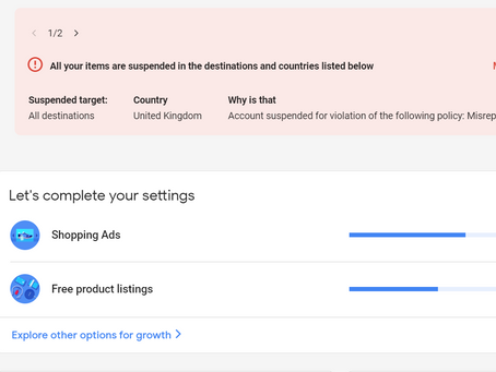 Why Has My Google Ads Account Been Suspended?