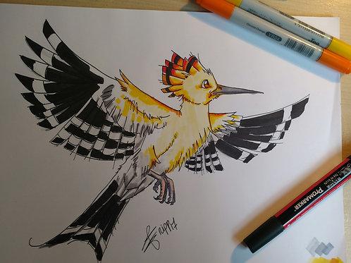 Oiseau du soleil