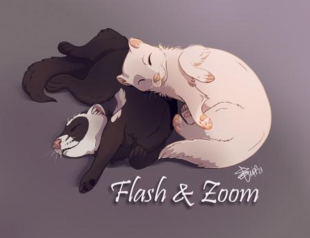 Flash & Zoom