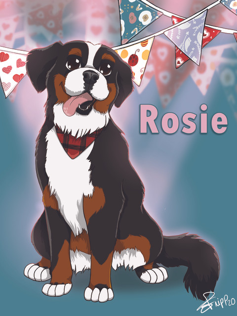 Rosie commande