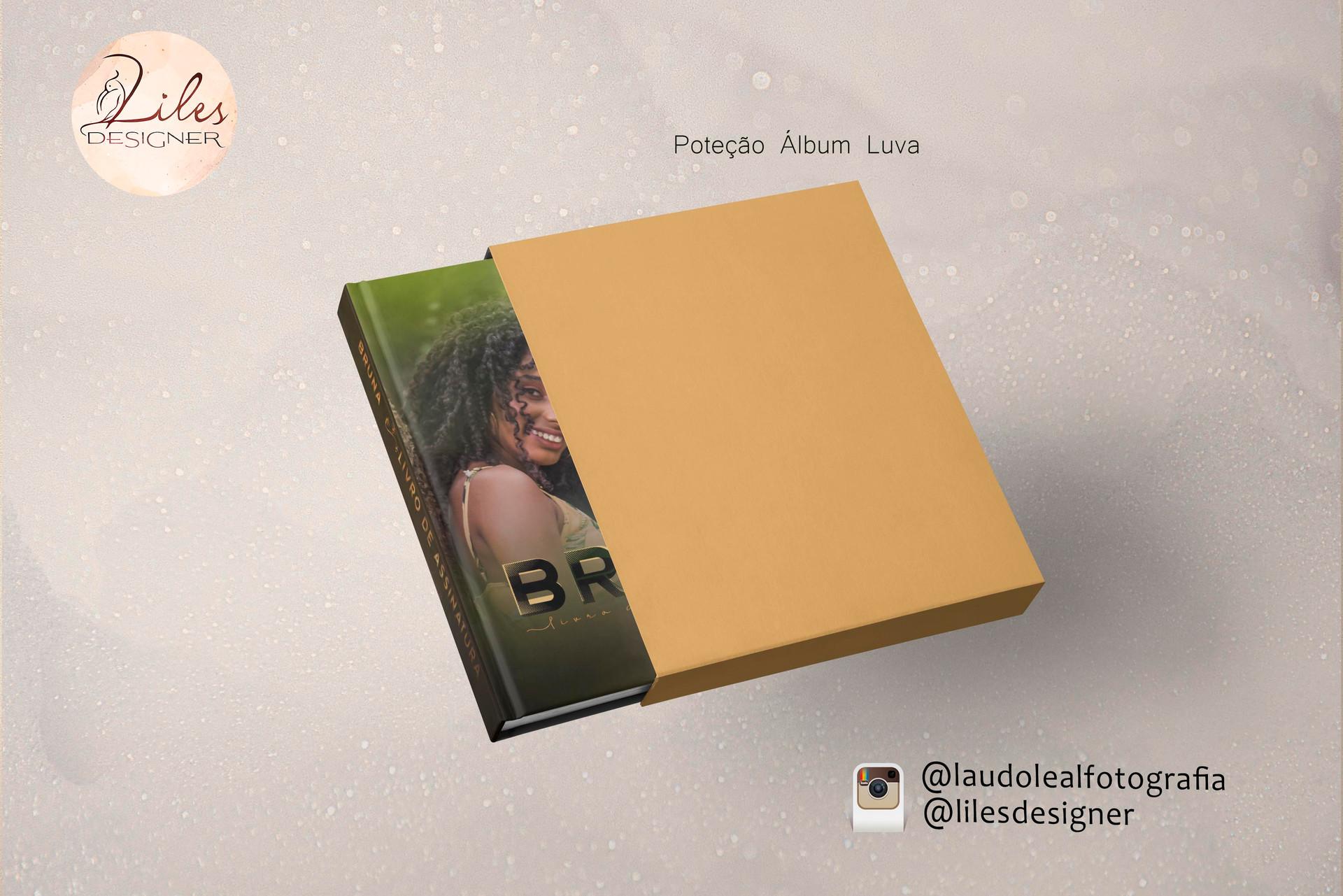 Mostra Álbum Capa com Luva
