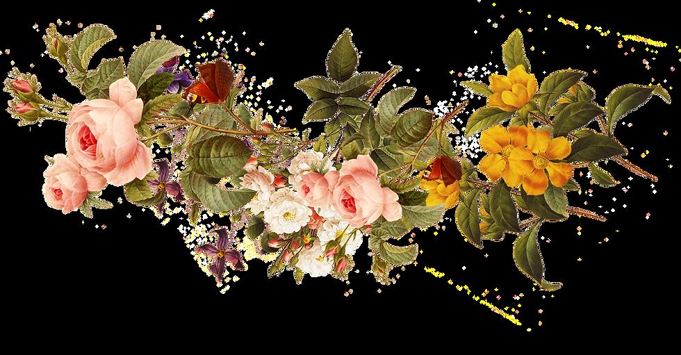 download-flower-beautiful-flowers-4837d4