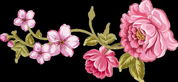 floral-design-flower-clip-art-flower-d616c22622182002de4ed47dd5471235_edited.png