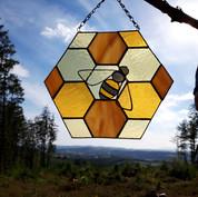 Honeycombe and bee