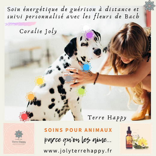 Terre Happy /Soins pour animaux