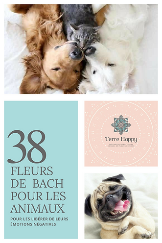 Terre Happy / Fleurs de Bach pour animaux
