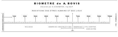 biometre de bovis simple.jpg