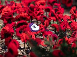 remembrance-PB117626