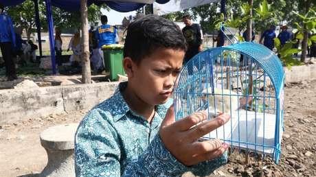 Adicción al móvil indonesia pollitos