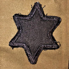 Sixth Infantry Division