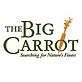 Big-Carrot.png