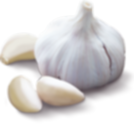 Garlic_alone_small_7dcd8e42-e3e1-486b-8b