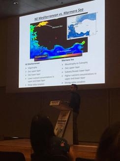 Presentation by İsmail Akçay during Goldschmidt 2019, Barcelona, Spain