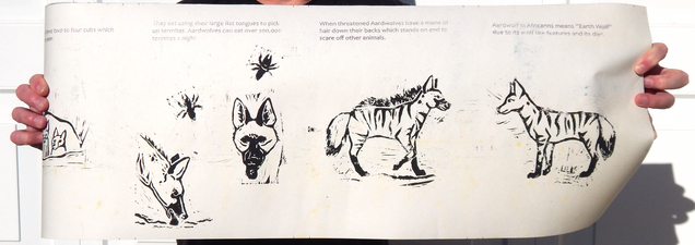 Have You Ever Heard of an Aardwolf?