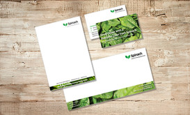 Spinach marketing collateral