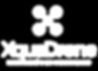 Logotipo Xquadrone Blanco-02.png