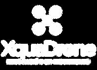 Logotipo Xquadrone