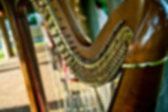 Wedding Event Harpist Candace Lark Philadelphia Event Wedding