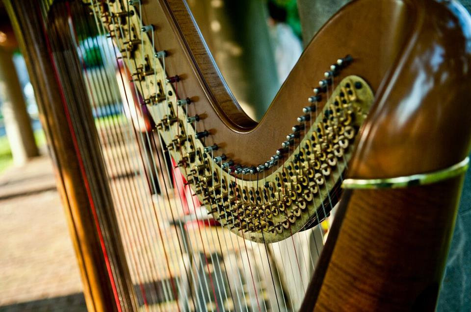 Wedding Event Harpist Candace Lark Philadelphia Event Wedding