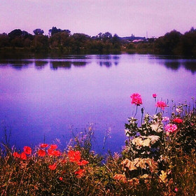Lakeside with pink and red flowers