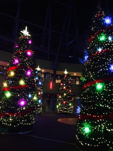 カラフルクリスマスツリー