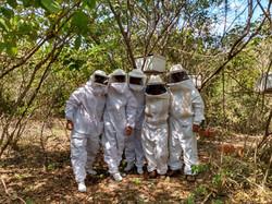Projeto Colmeia Nova - Bee Mel Piauí