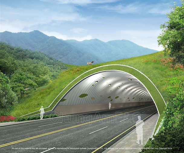 Ecological Type Tunnel_01 copy.jpg