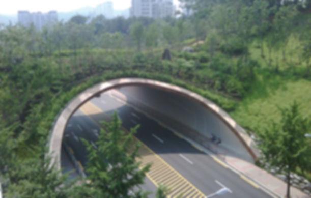 서울시 계남근린공원