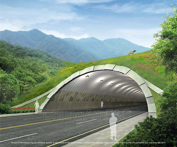 Ecological Type Tunnel_02 copy.jpg