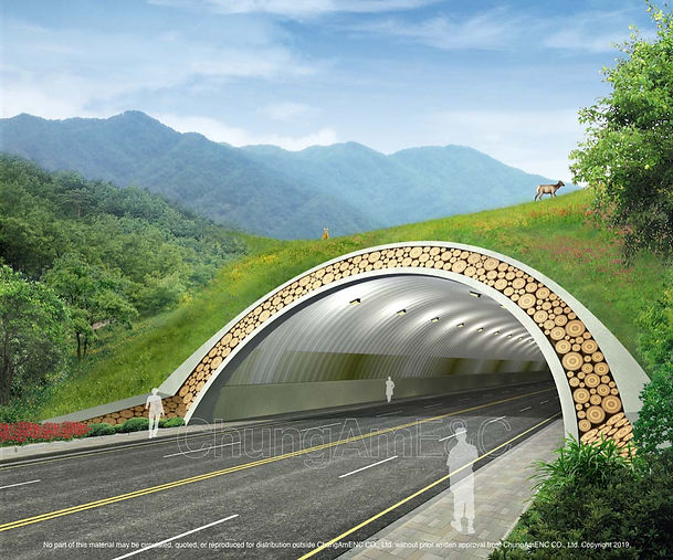 Ecological Type Tunnel_03 copy.jpg