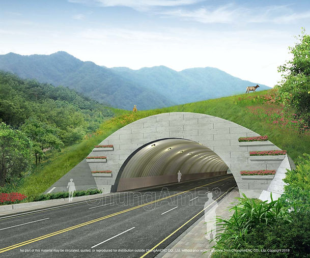 Ecological Type Tunnel_05 copy.jpg