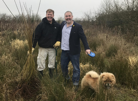 Supporting Bee and Forest Environments