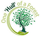 One-'Hull'-of-a-Forest.jpg
