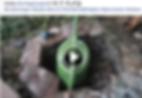 Screenshot 2020-04-21 11.07.22 (2).png