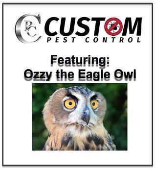 Custom Pest Control.jpg